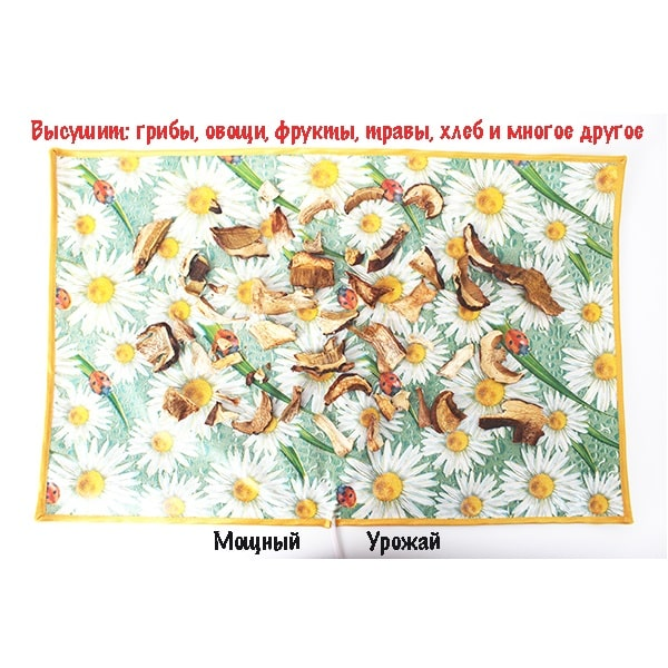 Фото Сушилка дляовощей ифруктов Мощный Урожай, 55х85 см., Ромашки